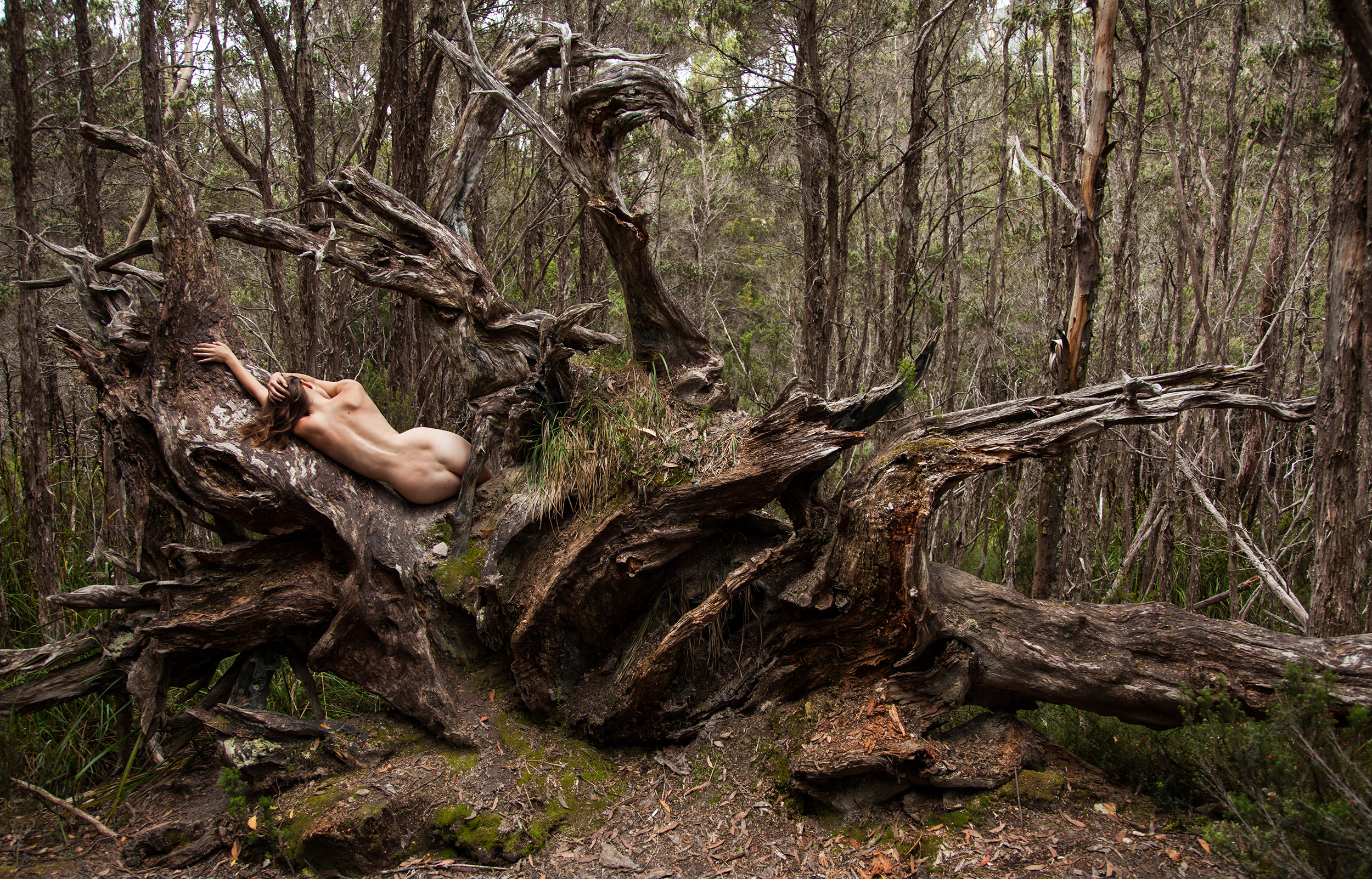 Nude In Nature  Alexstjean-7020
